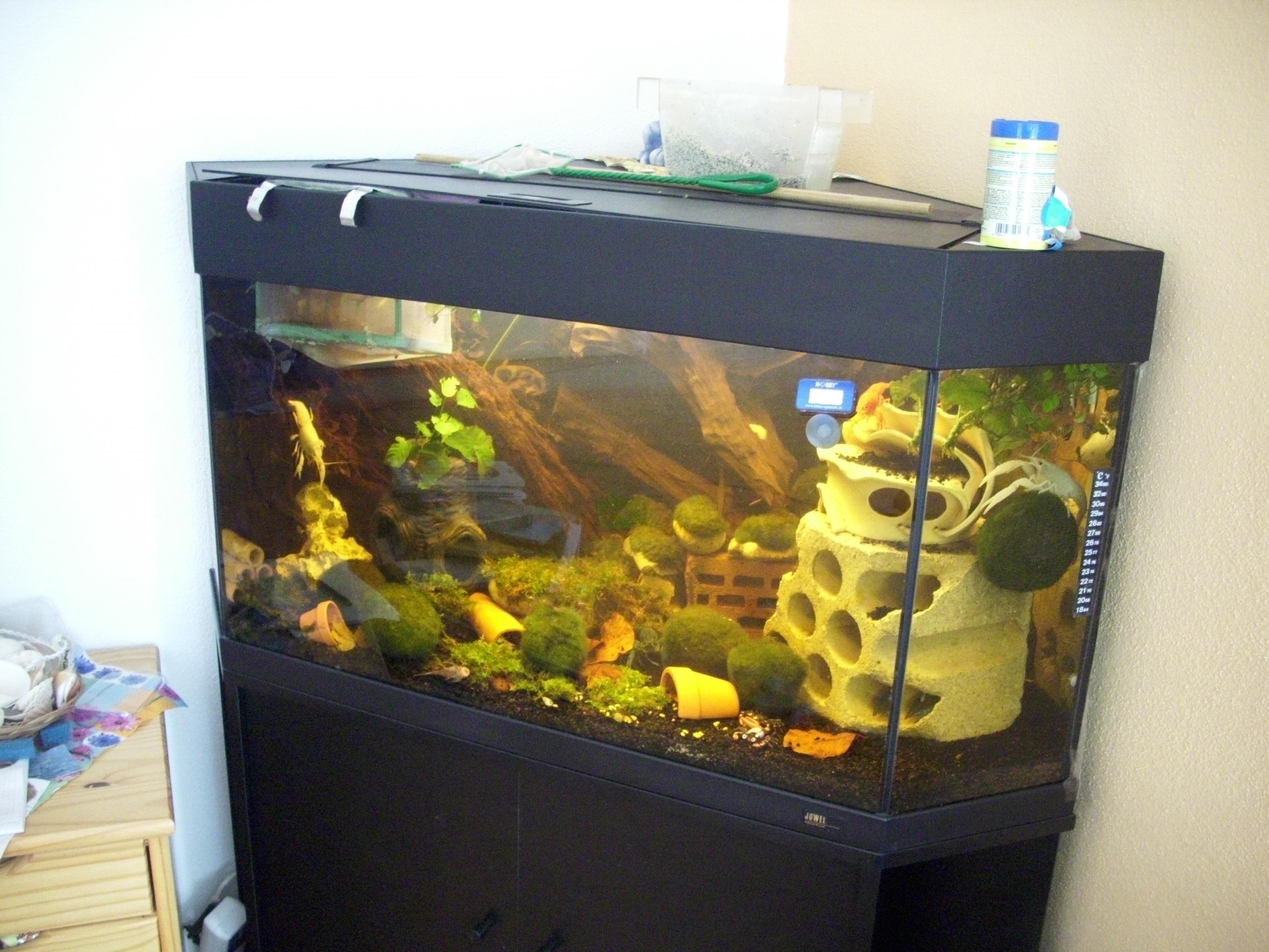eck aquarium 150 liter von juwel schwarz aquarien und zubeh r. Black Bedroom Furniture Sets. Home Design Ideas